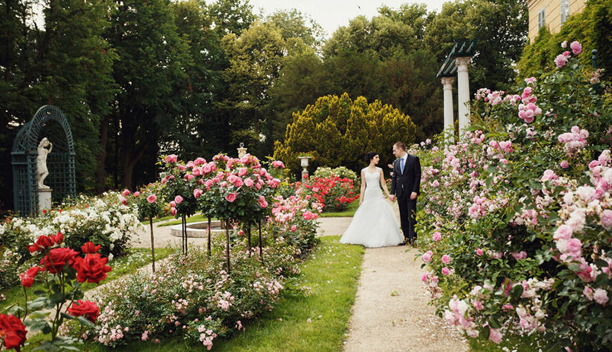 a-bride-and-a-groom-walk-in-the-garden